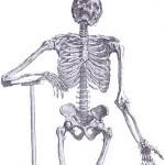 osteomieliti infezioni osso